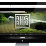 Volkswagen organise les premières courses d'insectes en ligne
