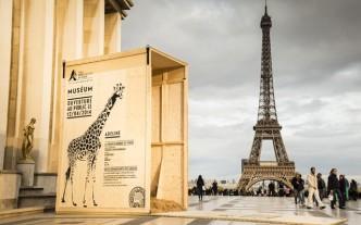 Zoo-Vincennes-affichage-evenementiel-paris-1